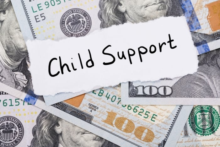 florida child support laws